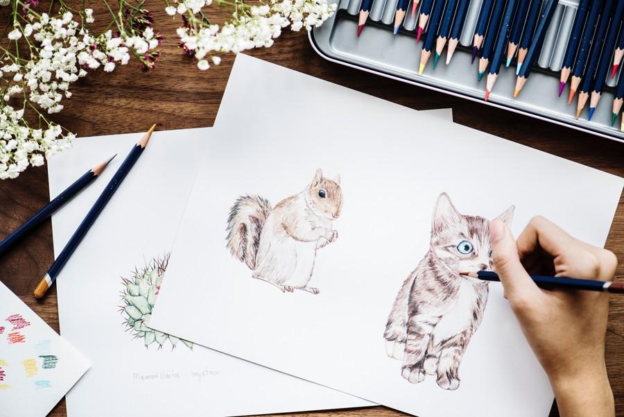 Obrázek zvířat nakreslený pastelkami.