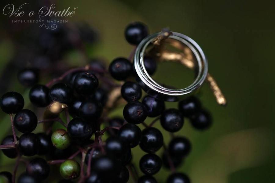 jednoduche-stribrne-krouzky-jsou-idealni-volbou-pro-prirodni-svatbu