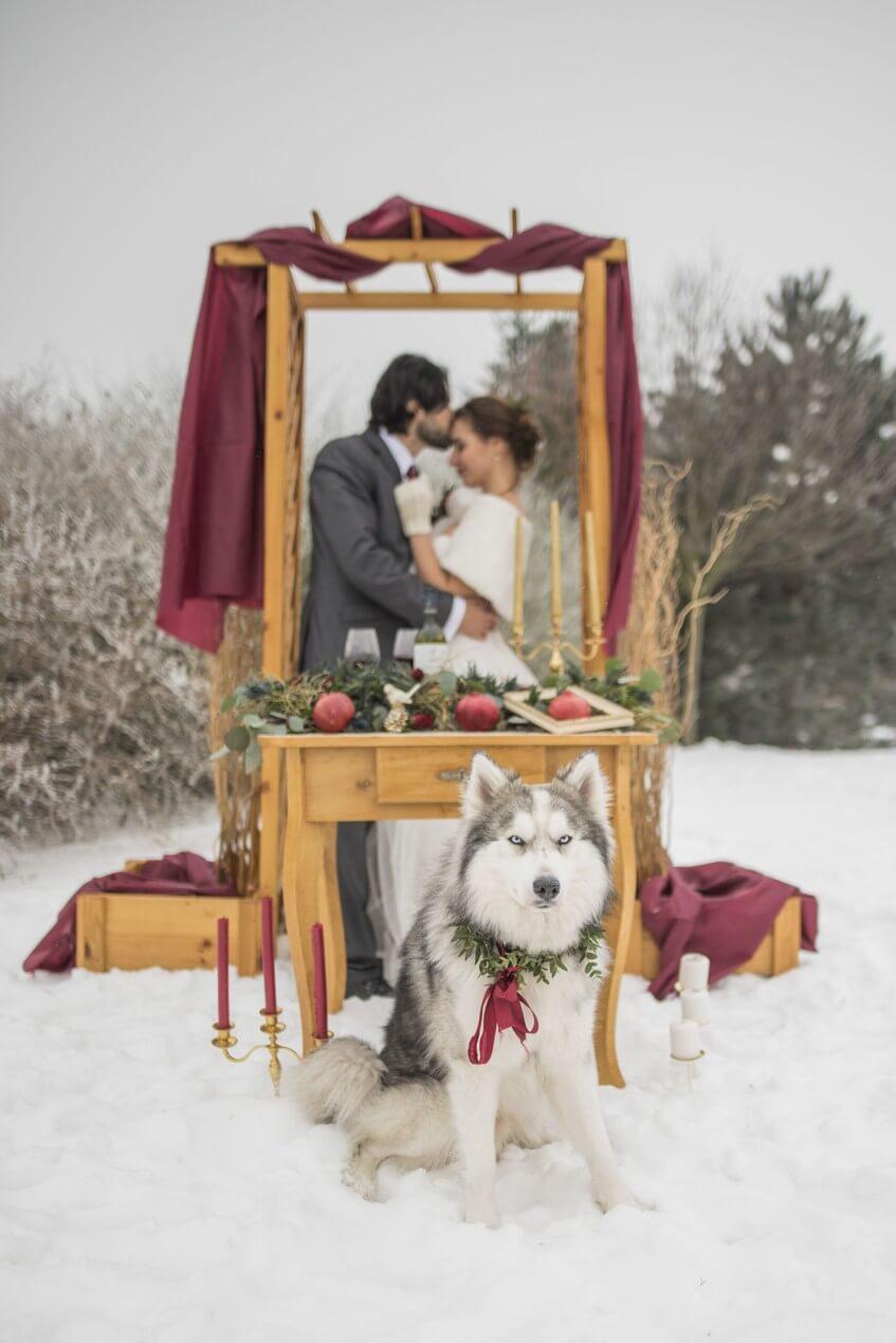 Zimní dřevěná slavobrána se svatebním párem a huskym.
