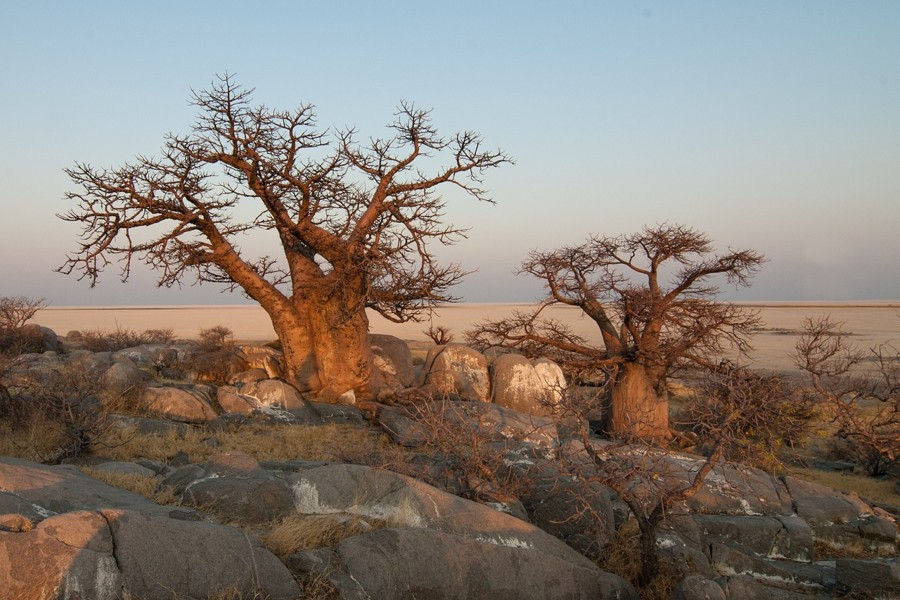 Odehrají se líbánky v některém z afrických států?